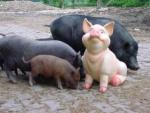 schweinefigur1_jpg.jpg